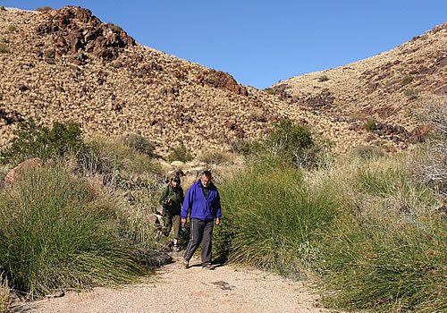 Daberas | Camping & Accommodation | Augrabies | Northern Cape | Accommodation