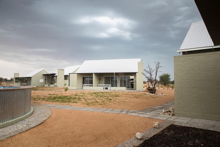 Kameelboomkoelte-Kalahari-85-1