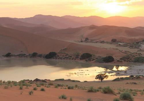 Richter Safaris14Ns