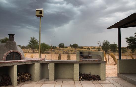 Kameelboomkoelte-Kalahari-86-1